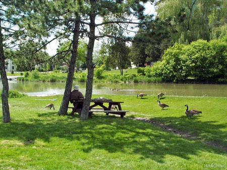 Fairy Lake in Newmarket Ontario